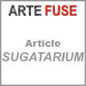 peter anton arte fuse article